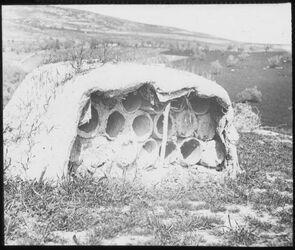 Glasplattendia Bienenstand, bei nebi dahi [laut vergleichbaren Bildern in Safed]