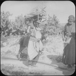 Glasplattendia Frau mit Wiege in sebastie