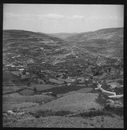 Glasplattendia Käsemachertal von N. [Jerusalem]