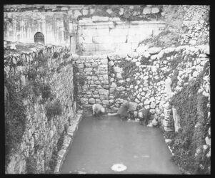 Glasplattendia Siloahteich [Jerusalem]