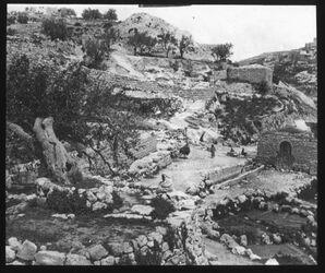 Glasplattendia Maulbeerbaum des Jesajas bei silwan [Siloah]
