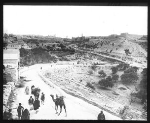 Glasplattendia Straße v. Bahnhof n. Jerus., Sultansteich [Jerusalem]