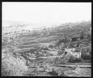 Glasplattendia Gegend des Ananosgrabens, s. Jerusalem [Besan/Ben-Hinnomtal]