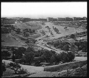 Glasplattendia Gethsemane v. O. [Jerusalem]