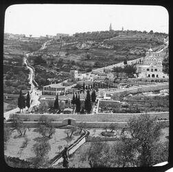 Glasplattendia Mt. Of Olives fr. city wall [Ölberg, Jerusalem]