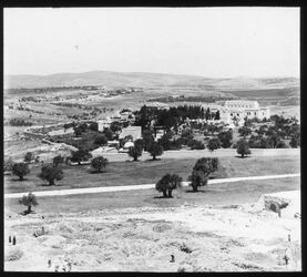 Glasplattendia Jerusalem, Ölberg, Viri Galilei, Galiläakuppen, v. SO