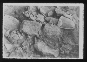 Glasplattendia Tell der-alla, Boden einer Küche mit Steinbank u. dem Opfer eines Erdebebens