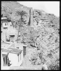 Glasplattendia ab Palme in Marsaba