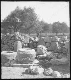 Glasplattendia [C II 4 bir kadismus b. mar elijas 1914 H. Schmidt (Mar Elyas = Baal-Perazim)]