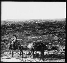 Glasplattendia Bethlehem vom Weg nach Bethlehem