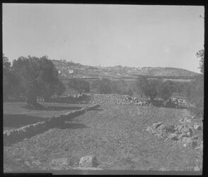 Glasplattendia Bethlehem v. Hirtenfeld