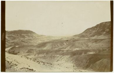 Fotografie wadi hof