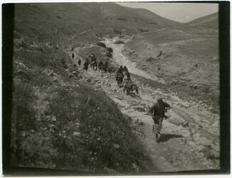 Fotografie Beim Abstieg zum Jordan (nach tell nimrin hinaus)