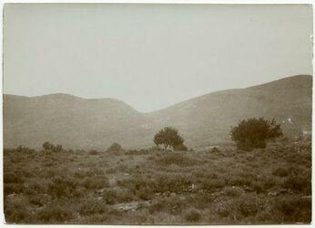 Fotografie westl. v. Berge, er-rame, gesehen vom Wege v. w. seltan, rechts Kinder v. errame