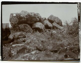Fotografie 1 Stunde nödrl. der Mündung des Jordans in d. See