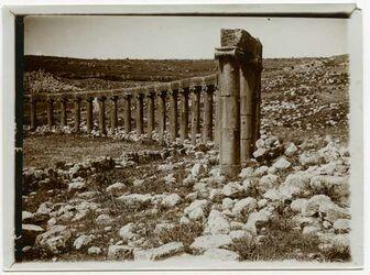 Fotografie Geras [Gerasa], Säulenreihe vom sog. Forum