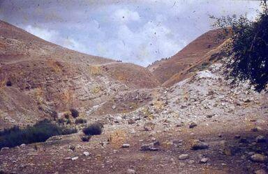 GDId00851; Dia; Pella [Tabaqat Fahil], Blick nach Osten., grau-schwarzer Plastik-Diarahmen, Bestand von hölzernen Diakisten mit insgesamt rund 1.000 Kleinbilddias einer Palästina-Exkursion vermutlich der Universität Greifswald wohl in den 1960er Jahren