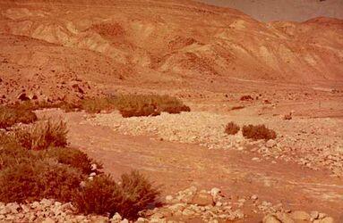 Dia Wadi el-Hesa östl. Tannur] (Wasser!)