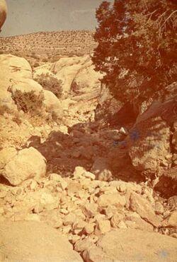 GDId01065; Dia; Nördl. Wadi [nach] W-O, gelb-schwarzer Plastik-Diarahmen, Bestand von hölzernen Diakisten mit insgesamt rund 1.000 Kleinbilddias einer Palästina-Exkursion