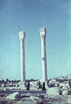 GDId01256; Dia; Palmyra nahe Triumphbogen, gelb-schwarzer Plastik-Diarahmen, Bestand von hölzernen Diakisten mit insgesamt rund 1.000 Kleinbilddias einer Palästina-Exkursion