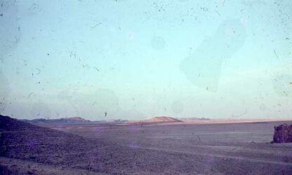 Dia Palmyra Blick v. Burg [nach] O.
