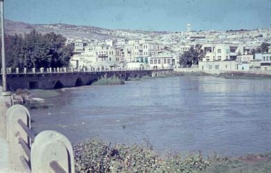 Dia Orontes-Brücke bei Djisr ech-Ch […?]