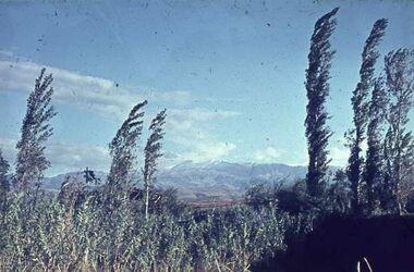 Dia N-ö. Triplolis [Blick zum] Libanon-Geb.