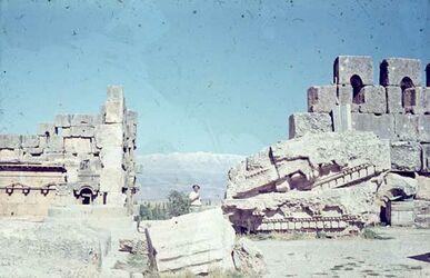 Dia Baalbek Bl. auf Libanon [nach] N