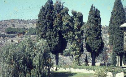 Dia Beit ed-Din Parkanlage