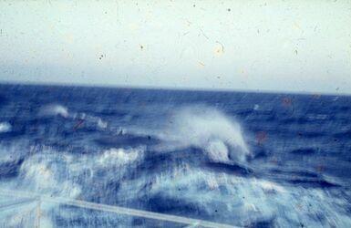 Dia Im Ionischen Meer