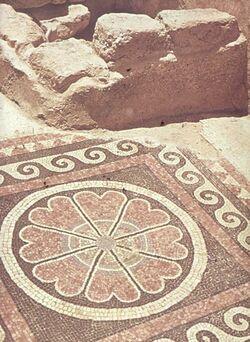 Dia [Masada, es-sebbe] Mosaik im Korridor z. priv. Bad W.-Pal.