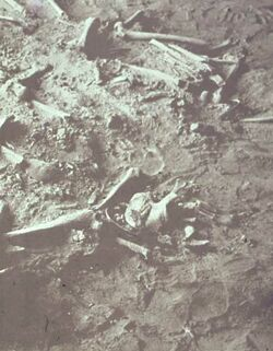Dia [Masada, es-sebbe] Skelettknochen in der Höhle