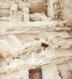 Dia [aus dem Buch: Sven Gillsäter u. a., Helgas Reise ins Heilige Land, 1965] Mauern von Jericho
