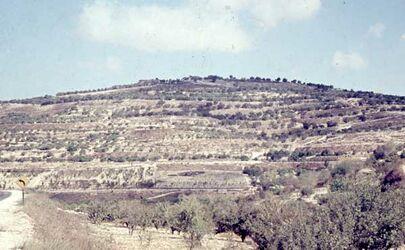 Dia Burghügel von Samaria [sebastie]
