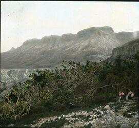 Glasplattendia Berg Nebo