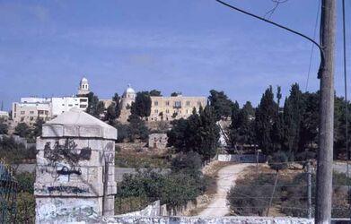 Dia Hebron - Blick in den Garten des orthodoxen Klosters mit der Terebinte [Israel-Exkursion]