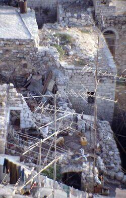 Dia Ziegen auf dem Dach, von der Geburtskirche gesehen [Bethlehem, Israel-Exkursion]