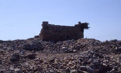 Dia Betel, Ruinen des Kreuzfahrerturmes mit Basilika im Vordergrund [Israel-Exkursion]