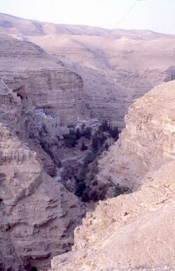 Dia Georgskloster von der Höhenstraße aus [Wadi Kelt, Israel-Exkursion]