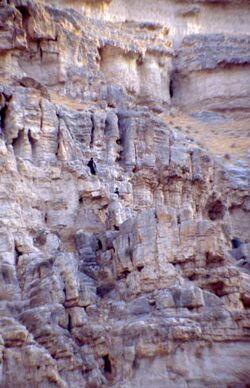 Dia Mönche des Georgsklosters beim Aufsuchen von Hölen [sic] [Georgskloster, Wadi Kelt, Israel-Exkursion]