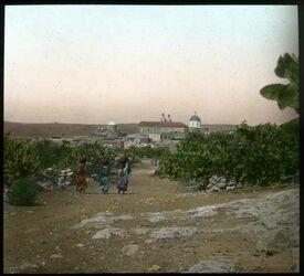 Glasplattendia Kana in Galiläa