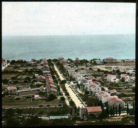 Glasplattendia Haifa, Deutsche Kolonie