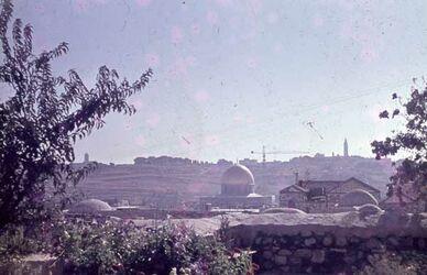 Dia Blick v. Garten Luth. Hospiz auf Ölberg [Jerusalem]