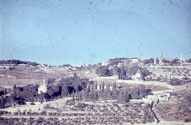 GDId00433; Dia; Russ. Gethsemane [Jerusalem], gelb-schwarzer Plastik-Diarahmen, Bestand von hölzernen Diakisten mit insgesamt rund 1.000 Kleinbilddias einer Palästina-Exkursion vermutlich der Universität Greifswald wohl in den 1960er Jahren