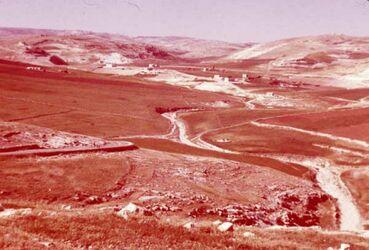 Dia Feld d. Boas u. d. Ruth b. Bethlehem