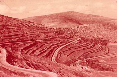 Dia Str. Jericho-Jerusalem Bl. auf Ölberg. Road to Jericho