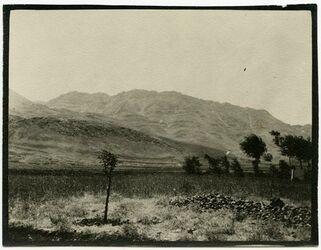 GDIp03924; Fotografie; [Antilibanon], in Bestand von rund 5.000 nach Themen und Orten sortierten Kleinbildabzügen