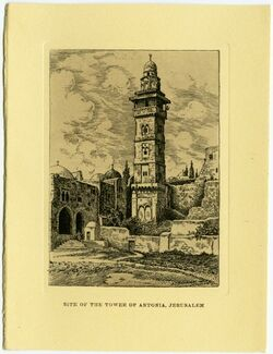 Postkarte Site of the tover of astoria, Jerusalem [Tempelberg]
