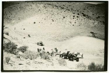 Fotografie bir ettureija
