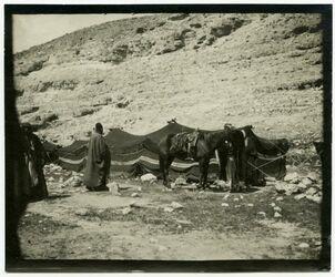 Fotografie w. rar [wadi el-rar]